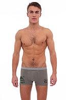 Трусы мужские boxer, хлопок Gasoline Blu 20801