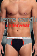 Трусы бикини Pierre Cardin 20994