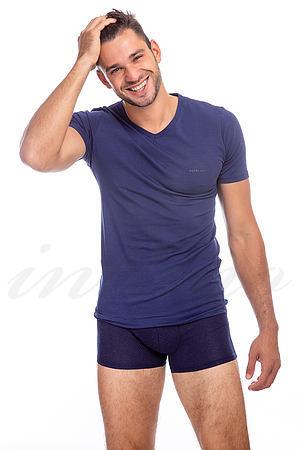 Комплект: футболка и трусы боксеры Pierre Cardin, Италия PCZ1117 фото